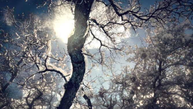 Prognoza pogody na dziś: <br />mroźno, miejscami ze śniegiem