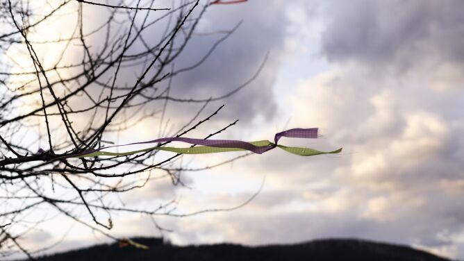 Silny wiatr. Sprawdź, gdzie IMGW może wydać alarmy